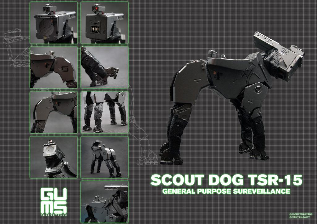scoutdgps